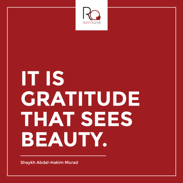 It-is-gratitude-that-sees-beauty